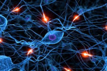 شبکههای عصبی مصنوعی